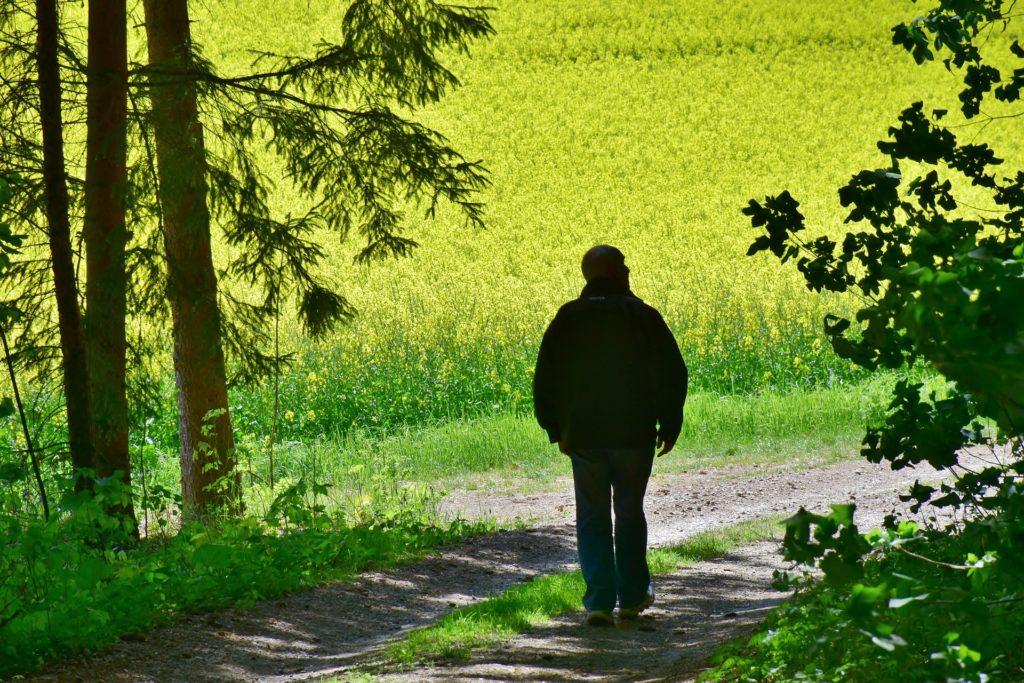 Bewegung tut der Leber besonders gut, vor allem im Grünen