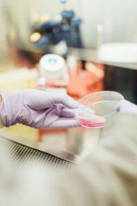 Seit 1998 gab es kein Nationales Forschungsprogramm im Bereich der Komplementärmedizin mehr.